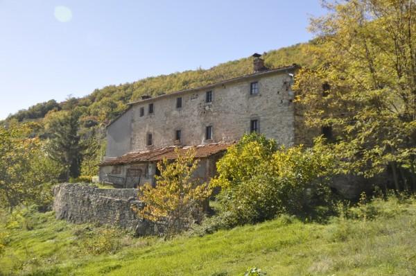 Locale Commerciale  in vendita a Chitignano, Campagna, Con giardino, 600 mq - Foto 15
