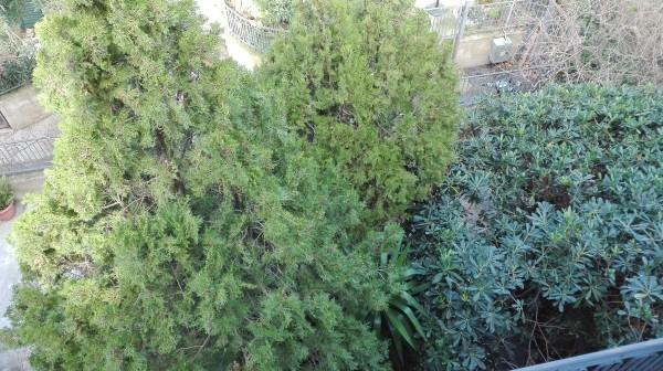 Villetta a schiera in vendita a Sant'Agata di Militello, Semicentrale, Con giardino, 200 mq - Foto 6