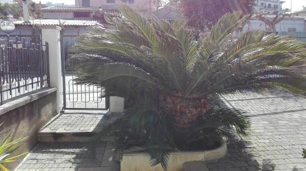 Villetta a schiera in vendita a Sant'Agata di Militello, Semicentrale, Con giardino, 200 mq - Foto 72