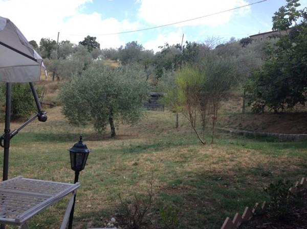 Rustico/Casale in vendita a Torgiano, Torgiano, Con giardino, 400 mq - Foto 7