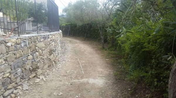 Villa in vendita a Santa Margherita Ligure, S.lorenzo Della Costa, Con giardino, 300 mq - Foto 7