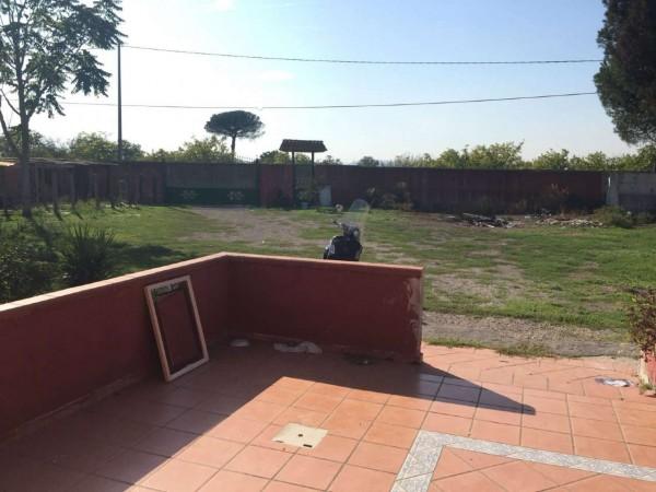 Villa in affitto a Sant'Anastasia, Con giardino, 100 mq - Foto 14