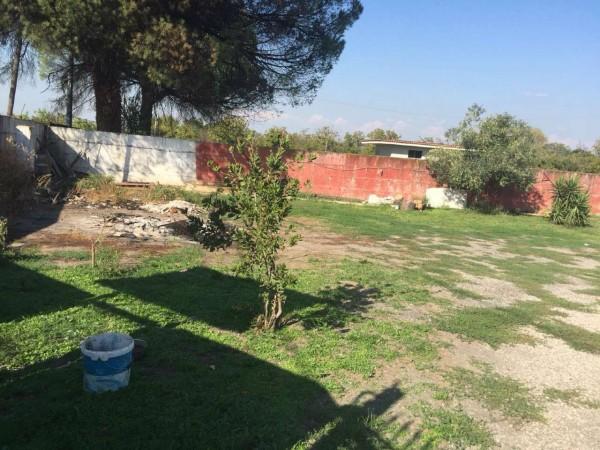 Villa in affitto a Sant'Anastasia, Con giardino, 100 mq - Foto 11