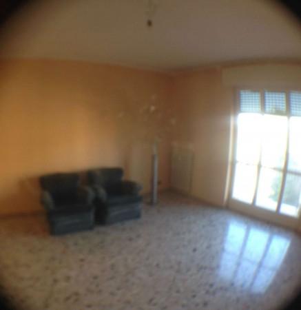 Appartamento in affitto a Gallarate, Con giardino, 85 mq - Foto 12