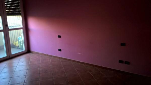 Appartamento in affitto a Santo Stefano Ticino, Residenziale, Con giardino, 60 mq - Foto 5