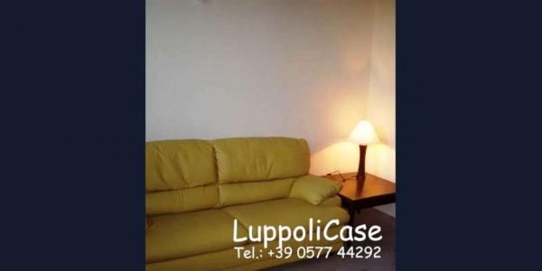Appartamento in affitto a Siena, Arredato, 25 mq - Foto 7