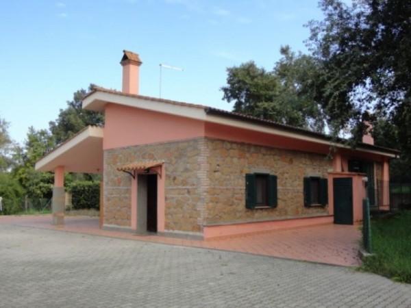 Casa indipendente in affitto a Pomezia, Aeroporto Pratica Di Mare, Arredato, con giardino, 45 mq