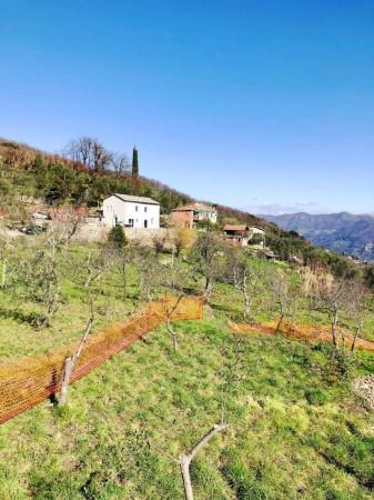 Casa indipendente in vendita a Santa Margherita Ligure, Dolcina Alta, Con giardino, 220 mq - Foto 2