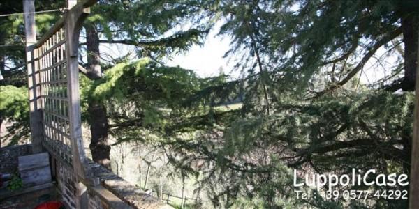 Villa in vendita a Siena, Con giardino, 200 mq - Foto 5