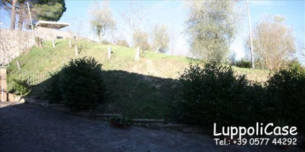 Villa in vendita a Siena, Con giardino, 200 mq - Foto 17