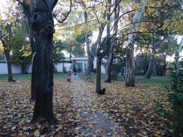 Villa in vendita a Roma, Mezzocammino, Con giardino, 140 mq - Foto 4