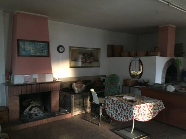 Casa indipendente in vendita a Ogliastro Cilento, Finocchito, Con giardino, 450 mq - Foto 3