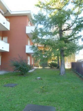 Appartamento in affitto a Varese, Ospedale, Arredato, con giardino, 40 mq