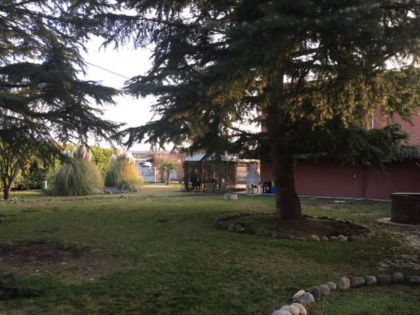 Villa in vendita a Alessandria, Cittadella, Con giardino, 200 mq - Foto 13