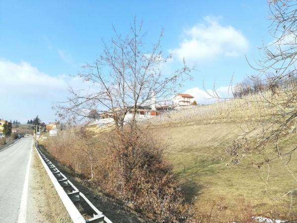 Casa indipendente in vendita a Belvedere Langhe, Con giardino, 220 mq - Foto 10