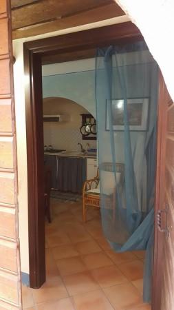 Appartamento in affitto a Trevi, Centrale, 55 mq - Foto 3