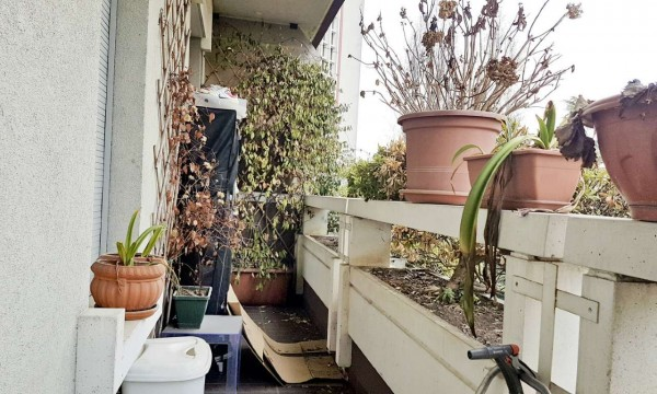 Appartamento in affitto a Milano, San Siro, Arredato, con giardino, 240 mq - Foto 6