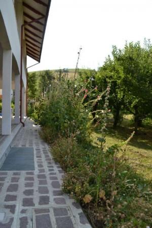 Appartamento in affitto a Maranello, Torre Maina, Arredato, con giardino, 70 mq - Foto 6
