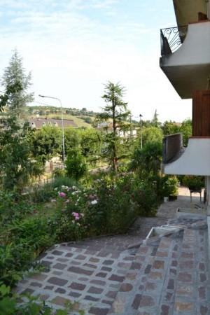 Appartamento in affitto a Maranello, Torre Maina, Arredato, con giardino, 70 mq - Foto 8