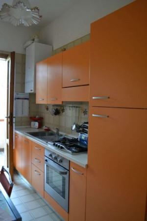 Appartamento in affitto a Maranello, Torre Maina, Arredato, con giardino, 70 mq - Foto 16