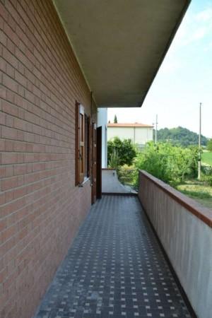 Appartamento in affitto a Maranello, Torre Maina, Arredato, con giardino, 70 mq - Foto 15