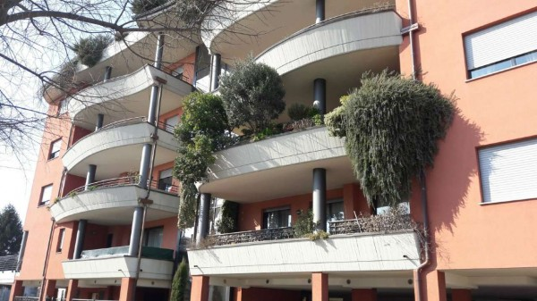 Appartamento in affitto a Busto Arsizio, Arredato, con giardino, 80 mq - Foto 4