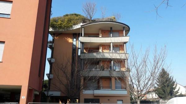 Appartamento in affitto a Busto Arsizio, Arredato, con giardino, 60 mq