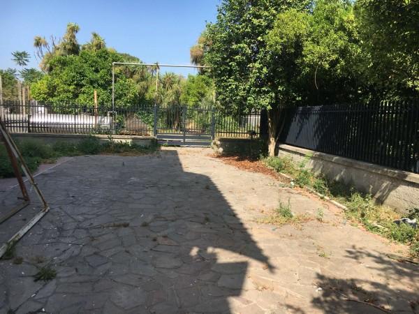 Locale Commerciale  in affitto a Pollena Trocchia, Con giardino, 100 mq