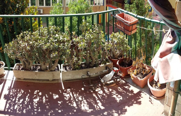 Appartamento in vendita a Roma, Magliana, Con giardino, 150 mq - Foto 17