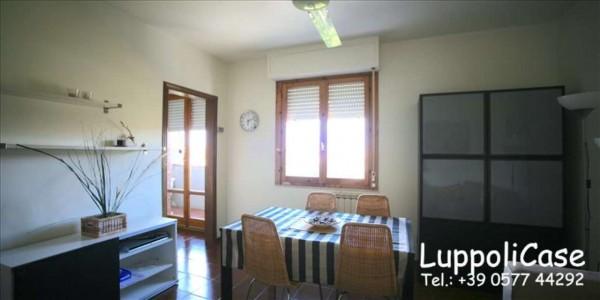 Appartamento in affitto a Monteroni d'Arbia, Arredato, 50 mq - Foto 8