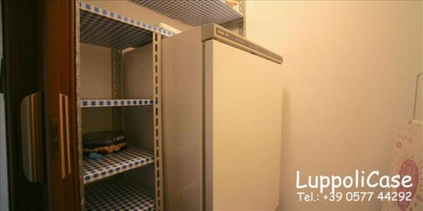 Appartamento in affitto a Monteroni d'Arbia, Arredato, 50 mq - Foto 2