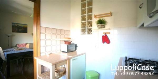 Appartamento in affitto a Monteroni d'Arbia, Arredato, 50 mq - Foto 11