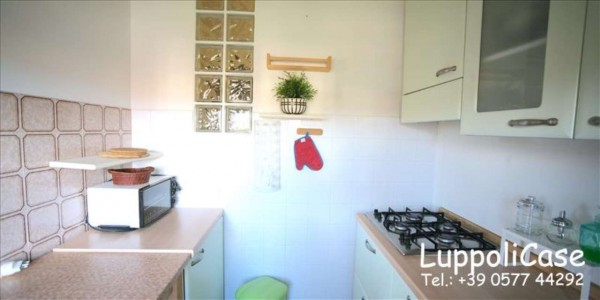 Appartamento in affitto a Monteroni d'Arbia, Arredato, 50 mq - Foto 12