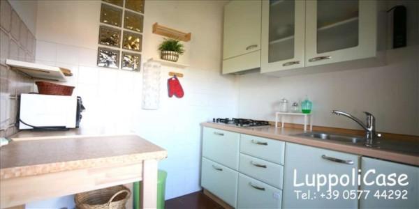 Appartamento in affitto a Monteroni d'Arbia, Arredato, 50 mq - Foto 13