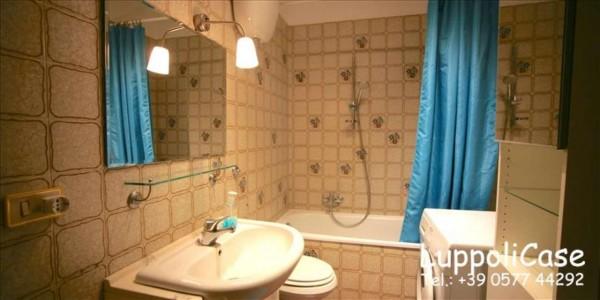 Appartamento in affitto a Monteroni d'Arbia, Arredato, 50 mq - Foto 6