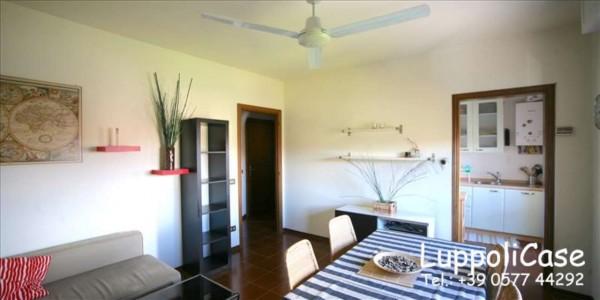 Appartamento in affitto a Monteroni d'Arbia, Arredato, 50 mq - Foto 9