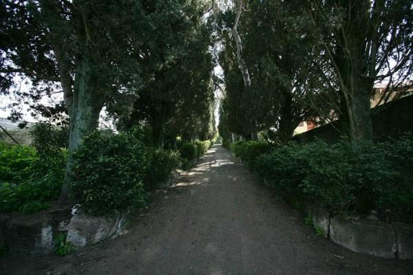 Villa in vendita a Campagnano di Roma, Con giardino, 600 mq - Foto 9