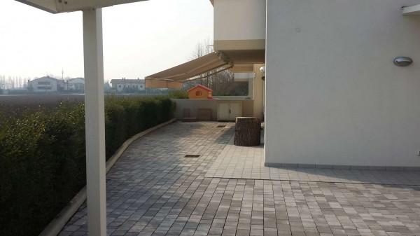 Appartamento in vendita a Albignasego, Con giardino, 150 mq - Foto 6