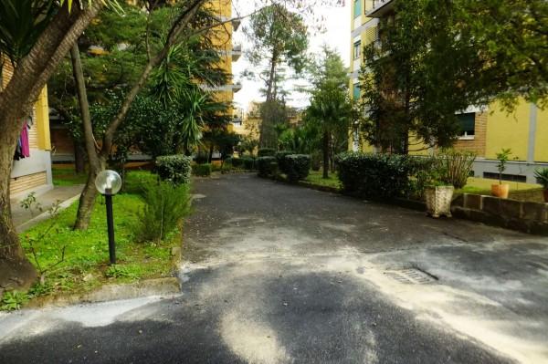 Appartamento in affitto a Roma, Con giardino, 100 mq - Foto 9