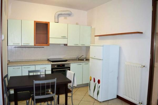 Appartamento in vendita a Forlì, Bussecchio, Arredato, con giardino, 50 mq - Foto 13