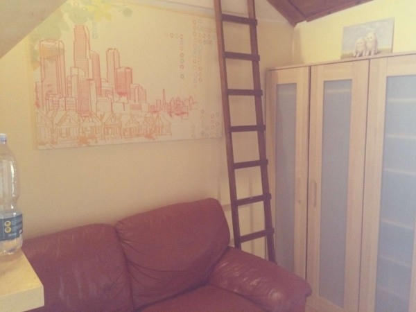 Appartamento in affitto a Torino, Arredato, con giardino, 25 mq