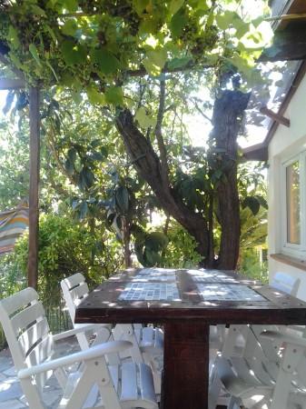 Casa indipendente in vendita a Sanremo, Residenziale, Con giardino, 87 mq - Foto 38