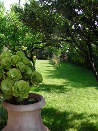 Casa indipendente in vendita a Sanremo, Residenziale, Con giardino, 87 mq - Foto 44