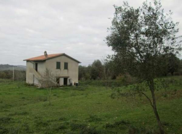 Rustico/Casale in vendita a Blera, Con giardino, 180 mq