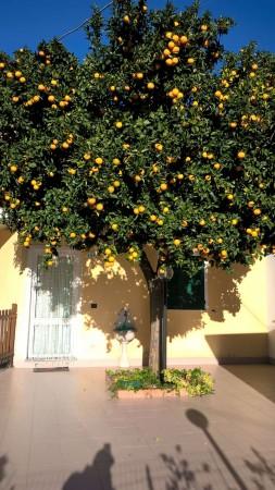 Appartamento in affitto a Uscio, Cià, Arredato, 40 mq - Foto 22