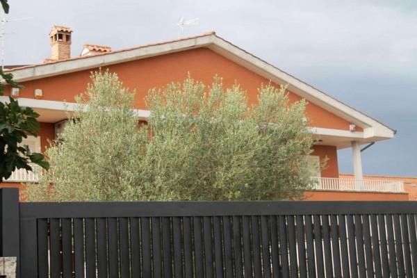 Appartamento in affitto a Roma, Boccea, Arredato, 45 mq - Foto 1