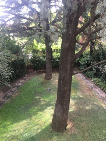 Villa in vendita a Milano, Con giardino, 500 mq - Foto 11