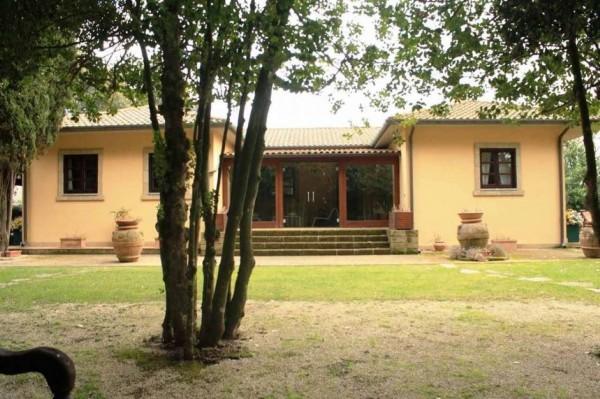 Villa in vendita a Vetralla, Con giardino, 240 mq