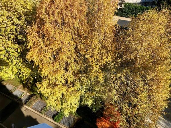 Appartamento in vendita a Milano, Pinerolo, Con giardino, 200 mq - Foto 11