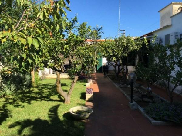 Villa in vendita a Lecce, San Cataldo, Con giardino, 210 mq - Foto 4